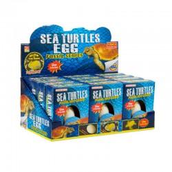 Sea Turtle Eggs - Glow in the Dark (12ct) RRP £1.99